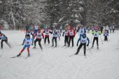 Лыжная гонка памяти тренеров детско-юношеской спортивной школы г. Переславля-Залесского