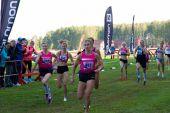 Результаты открытого Чемпионата и первенства  города Ярославля по легкоатлетическому кроссу